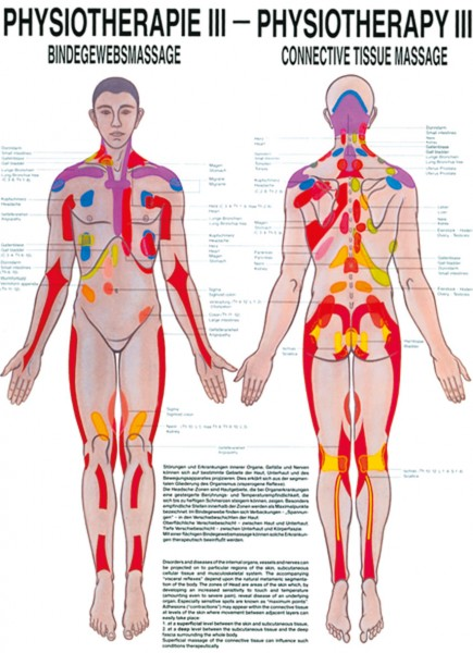 Lehrtafel - Physiotherapie 3